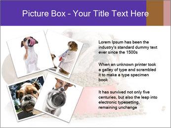 0000081794 PowerPoint Templates - Slide 23