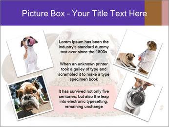 0000081794 PowerPoint Templates - Slide 24