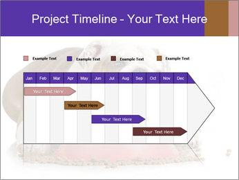 0000081794 PowerPoint Templates - Slide 25