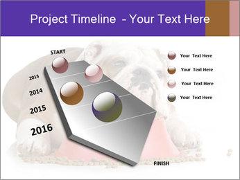 0000081794 PowerPoint Templates - Slide 26