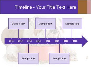 0000081794 PowerPoint Templates - Slide 28