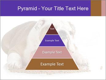 0000081794 PowerPoint Templates - Slide 30