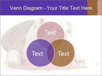 0000081794 PowerPoint Templates - Slide 33