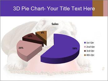 0000081794 PowerPoint Templates - Slide 35