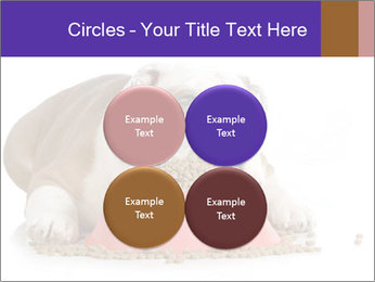 0000081794 PowerPoint Templates - Slide 38