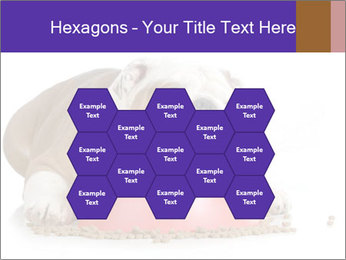 0000081794 PowerPoint Templates - Slide 44