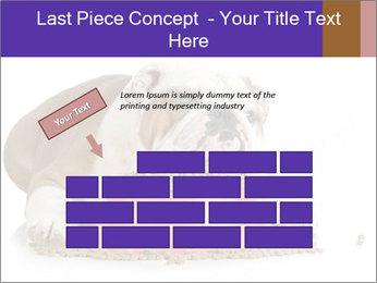 0000081794 PowerPoint Templates - Slide 46