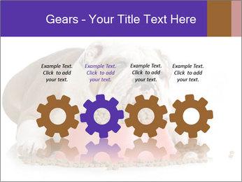 0000081794 PowerPoint Templates - Slide 48