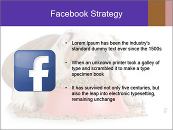 0000081794 PowerPoint Templates - Slide 6