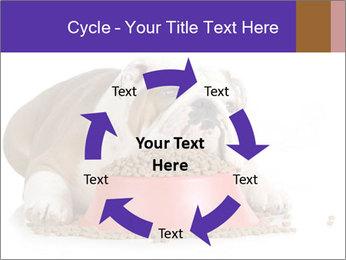 0000081794 PowerPoint Templates - Slide 62