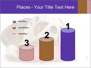 0000081794 PowerPoint Templates - Slide 65