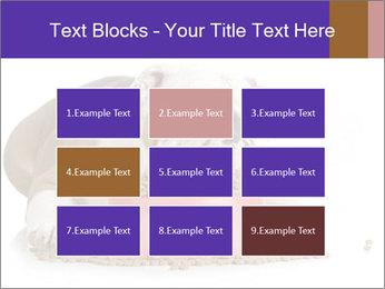 0000081794 PowerPoint Templates - Slide 68