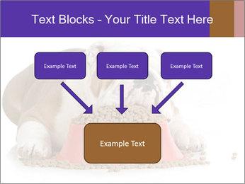 0000081794 PowerPoint Templates - Slide 70