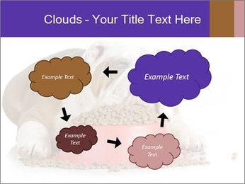 0000081794 PowerPoint Templates - Slide 72