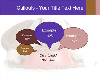 0000081794 PowerPoint Templates - Slide 73