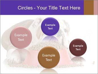 0000081794 PowerPoint Templates - Slide 77