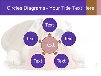 0000081794 PowerPoint Templates - Slide 78