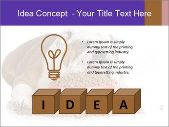 0000081794 PowerPoint Templates - Slide 80