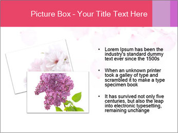 0000081795 PowerPoint Templates - Slide 20