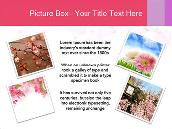 0000081795 PowerPoint Templates - Slide 24