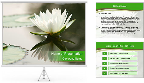0000081796 PowerPoint Template
