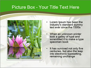0000081796 PowerPoint Template - Slide 13