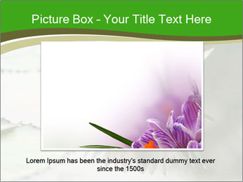 0000081796 PowerPoint Template - Slide 16