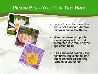 0000081796 PowerPoint Template - Slide 17