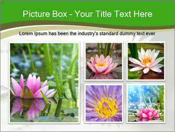 0000081796 PowerPoint Template - Slide 19
