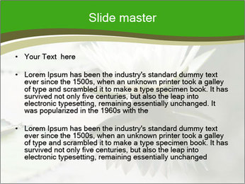 0000081796 PowerPoint Templates - Slide 2