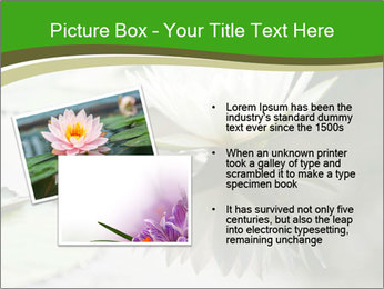 0000081796 PowerPoint Template - Slide 20