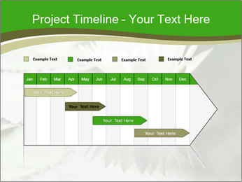 0000081796 PowerPoint Template - Slide 25
