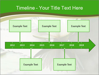 0000081796 PowerPoint Template - Slide 28