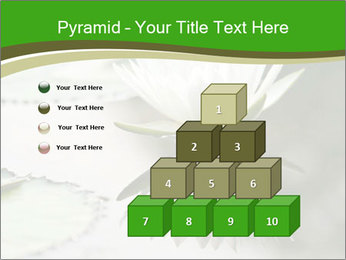 0000081796 PowerPoint Template - Slide 31