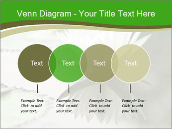 0000081796 PowerPoint Template - Slide 32