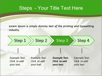 0000081796 PowerPoint Template - Slide 4