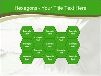 0000081796 PowerPoint Templates - Slide 44