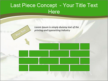 0000081796 PowerPoint Templates - Slide 46