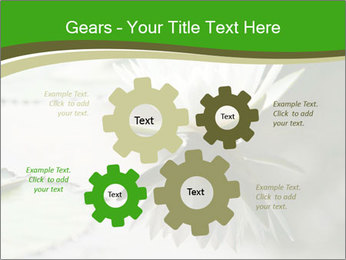 0000081796 PowerPoint Templates - Slide 47