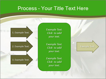 0000081796 PowerPoint Template - Slide 85