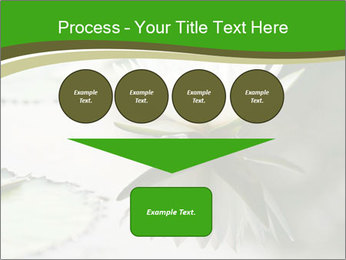 0000081796 PowerPoint Template - Slide 93