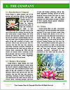 0000081796 Word Templates - Page 3