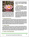 0000081796 Word Templates - Page 4