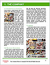 0000081799 Word Template - Page 3