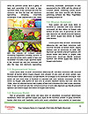 0000081799 Word Template - Page 4