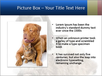 0000081802 PowerPoint Templates - Slide 13