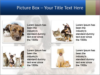 0000081802 PowerPoint Templates - Slide 14
