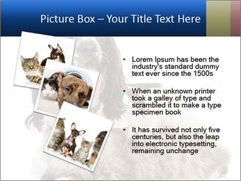 0000081802 PowerPoint Templates - Slide 17