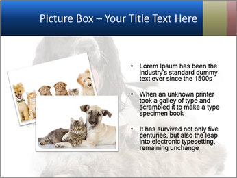 0000081802 PowerPoint Templates - Slide 20