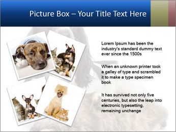0000081802 PowerPoint Templates - Slide 23